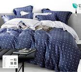 寢好眠 TENCE 40支紗天絲雙人鋪棉兩用被套床包四件組-多色選