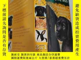 二手書博民逛書店animal罕見ark pets puppy puzzle kitten crowd rabbit race 動物