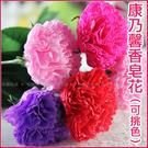康乃馨香皂花(單支有包裝)*母親節精油香...