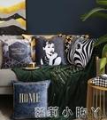 北歐絲絨抱枕輕奢復古客廳沙發靠墊靠枕床頭辦公室腰靠抱枕套枕芯 NMS蘿莉新品