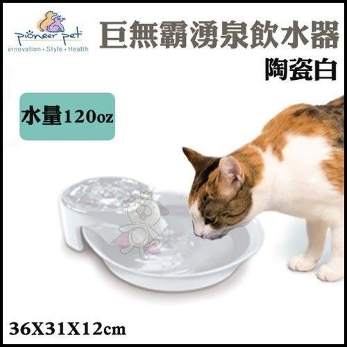*King Wang*Pioneer Pet 巨無霸湧泉飲水器(陶瓷白 D160)
