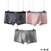 3條男士內褲男平角褲純棉質條紋