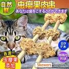 【培菓平價寵物網】自然鮮系列》虫癭果肉串貓玩具NF-015