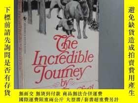 二手書博民逛書店The罕見Incredible Journey (Animal