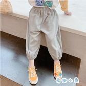 長褲女童運動秋季兒童休閒寬鬆小腳褲【奇趣小屋】