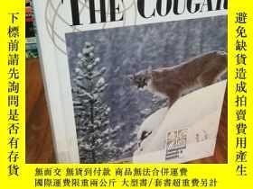 二手書博民逛書店The罕見Cougar (Endangered Animals