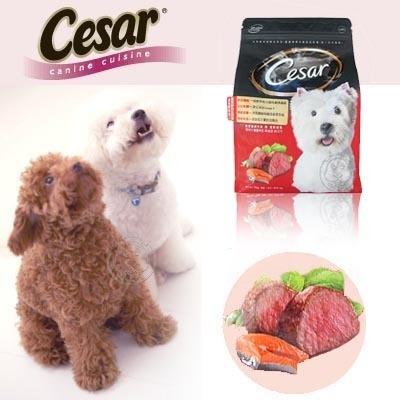 【培菓平價寵物網】Cesar西莎乾糧飼料系列1kg*5包