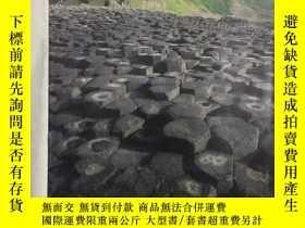 二手書博民逛書店日本地質學會News罕見5.12Y244941 日本地質學會 日