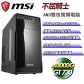 【南紡購物中心】微星平台【不屈騎士】(A3000G/240G SSD/8G D4/GT730/450W)
