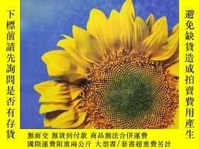 二手書博民逛書店sun罕見flowerY12498