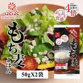 日本 Hakubaku 黃金糯麥 100g 個別包 大麥 穀物飯 米 糯麥米飯 食物纖維 膳食纖維