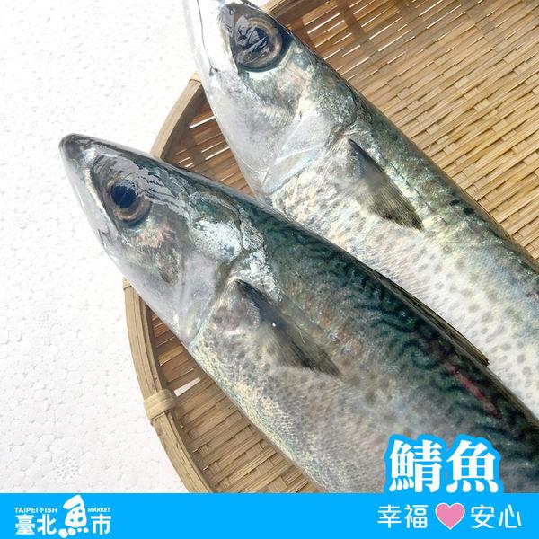【台北魚市】  鯖魚 340g±10%