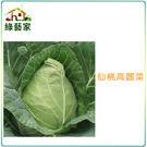 【綠藝家】B09.仙桃高麗菜種子100顆...