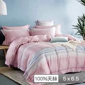 【貝兒居家寢飾生活館】頂級100%天絲鋪棉涼被(清輝粉150×195cm)