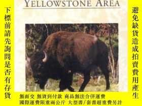 二手書博民逛書店Brucellosis罕見In The Greater Yellowstone Area-大黃石地區布氏桿菌病