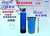 淨水器全戶型地下水過濾電子式時間型控制頭.30公升全自動軟水器.餐飲RO.貨號B1155【巡航淨水】