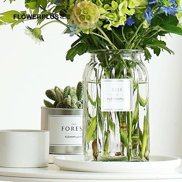 FlowerPlus花加 礁石REEF透明花瓶家居裝飾插花擺件YJT