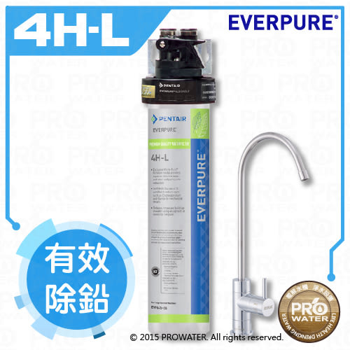 【水達人】愛惠浦EVERPURE 愛惠浦淨水器極致家用型淨水器(QL3-4HL)~免費到府標準安裝