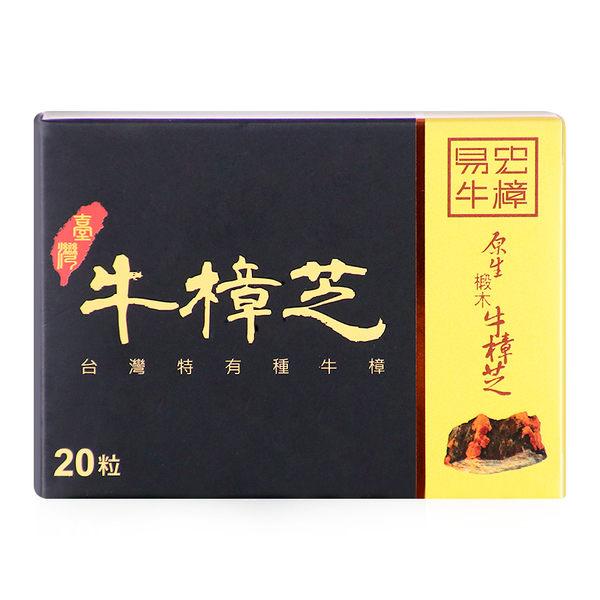 易宏牛樟-牛樟芝膠囊 (20粒/盒)(客訂)