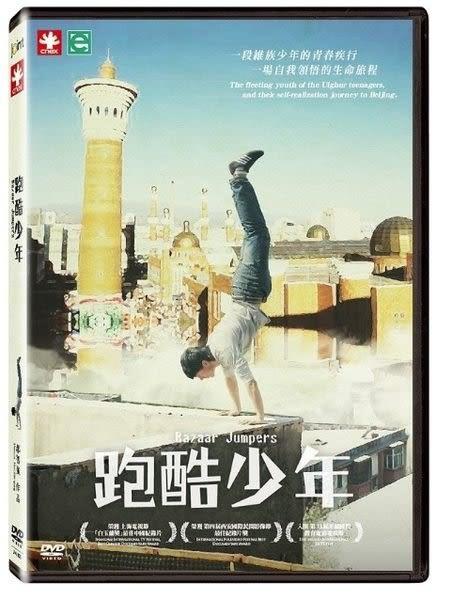 跑酷少年 DVD (購潮8)