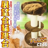 📣此商品48小時內快速出貨🚀》寵愛物語doter》CT46貓咪玩樂帝王展望台貓跳台PLUS(限宅配)