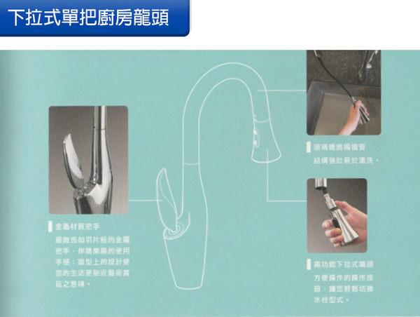 [Huntington] 美國精品無鉛龍頭 現代系列_天鵝造型單把兩功能下拉式磁吸噴頭_廚房龍頭 (K198224)