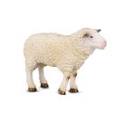 【永曄】collectA 柯雷塔A-英國高擬真動物模型-家庭動物-綿羊 88008