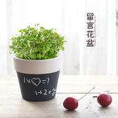 【雙11萊111免運】桌面創意綠植留言盆栽 創意陶瓷多肉植物DIY可寫字花盆 生態E園