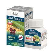 HAC 晶亮葉黃膠囊14 粒單瓶哈克麗康、永信藥品【杏一】