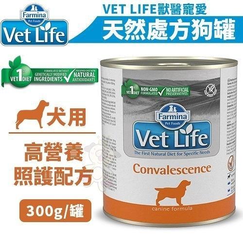 *KING WANG*【單罐】法米納VET LIFE獸醫寵愛天然處方《犬用處方罐(犬用高營養照護配方)》300g