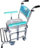 便器椅 便盆倚 鋁製 扶手升降 FZK4306