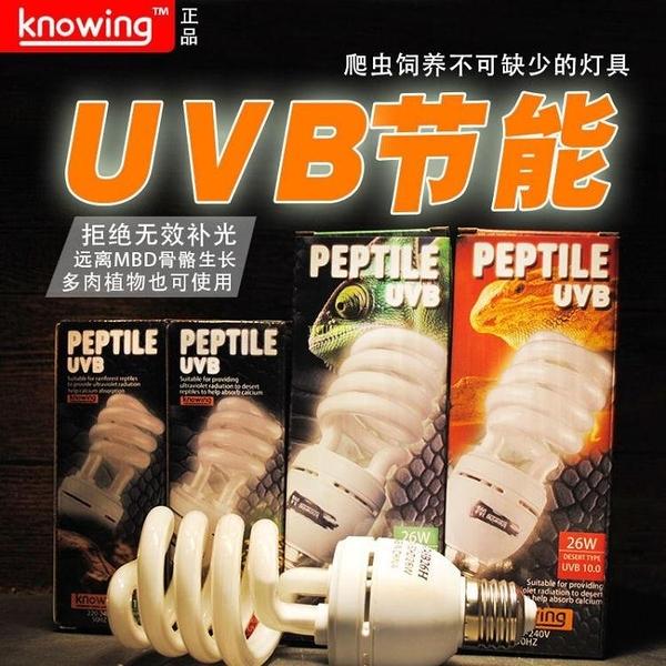 knowing諾茵爬寵UVB紫外線補鈣節能燈爬蟲曬背燈5.0/10.0多肉 快速出貨