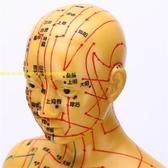 超清晰人體經絡穴位模型針灸穴位銅色刻字無味十四經絡男女模型