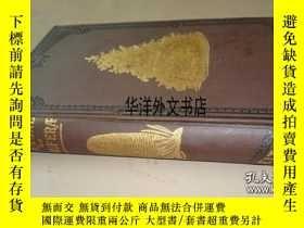 二手書博民逛書店【罕見】1881年出版 A Manual of The ConiferaeY226683 James Veit