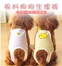 寵物母狗狗生理褲女泰迪狗狗衛生巾生理褲姨媽可替換防 『洛小仙女鞋』
