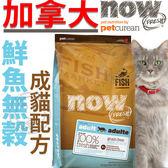 【培菓平價寵物網】now》鮮魚無穀成貓配方貓糧4磅1.82kg