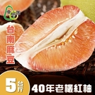 普明園.嚴選台南麻豆40年老欉紅柚(5台斤/箱)﹍愛食網