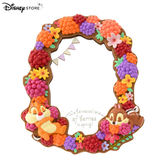 日本 Disney Store 迪士尼商店 限定  奇奇蒂蒂 Hello Chip and Dale 立式 化妝鏡