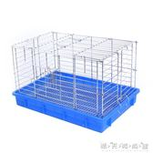 兔兔籠子 豚鼠籠 荷蘭豬籠 防噴尿藍盆 晴天時尚館