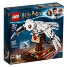 LEGO 樂高 哈利波特 75979 嘿美 白色貓頭鷹 雪鴞 【鯊玩具Toy Shark】