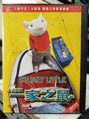 影音專賣店-Y32-016-正版VCD-動畫【一家之鼠小史都華】-國語發音