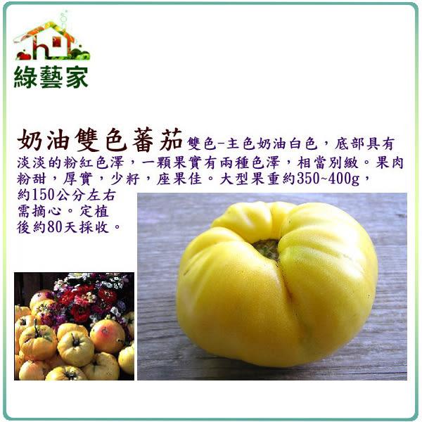 【綠藝家】大包裝G70.奶油雙色蕃茄種子80顆