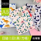 珠友官方獨賣 BC-50452 2020...