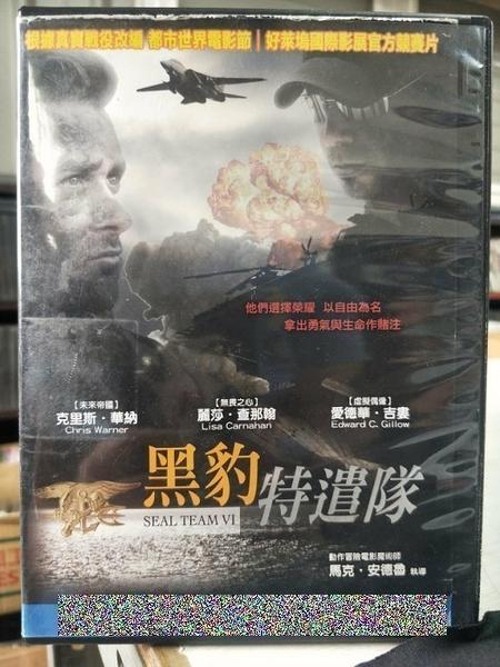 挖寶二手片-Y64-077-正版DVD-電影【黑豹特遣隊】-克里斯華納 麗莎查那翰