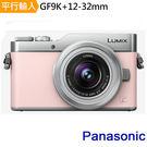 Panasonic DMC GF9K+1...