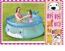 *粉粉寶貝玩具*親親系列jilong-快樂小鯨魚嬰兒游泳池/加高加大充氣球池~三層加厚網布