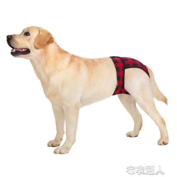 寵物生理褲金毛阿拉中大型犬母狗月經褲狗狗防騷擾大狗衛生安全褲 快速出貨