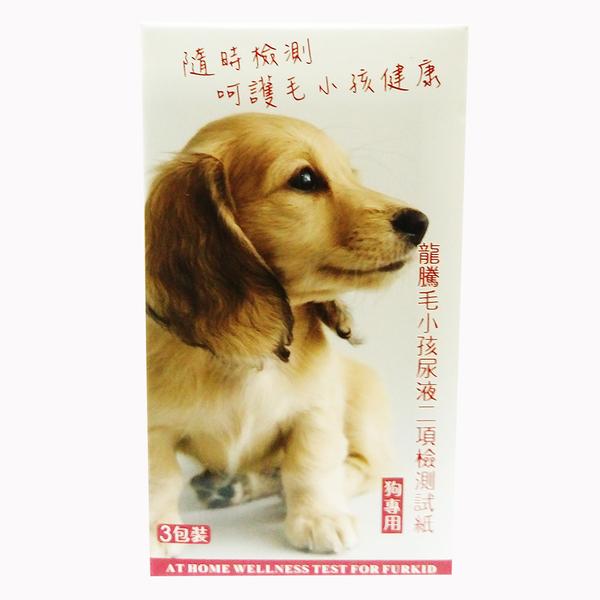 龍騰 動物試紙 狗 狗尿液2項檢測試紙 3入/盒 -台灣大廠製造