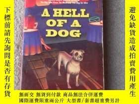 二手書博民逛書店A罕見Hell of a DogY21478 Carol Lea