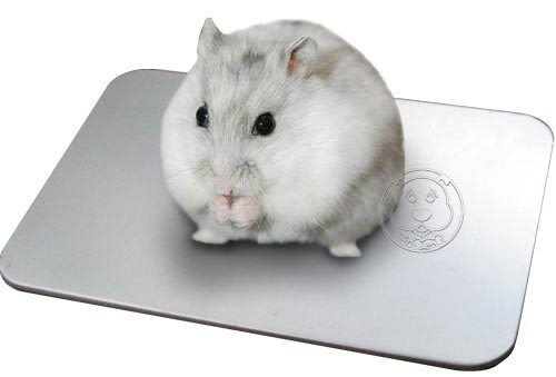 【zoo寵物商城】 《小老鼠/迷您兔》涼夏散熱加厚涼鋁墊